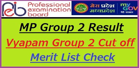 MP Vyapam Group 2 Result 2018