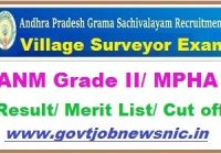 AP Grama Sachivalayam ANM Result 2019