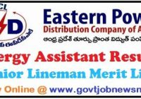 APEPDCL Energy Assistant Result 2019