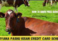 Haryana Pashu Credit Card Yojana 2021